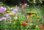 цветен остров в градина