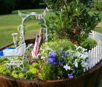 миниатюрна градинка в саксия