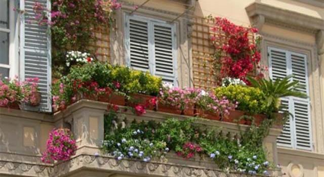 Идеи за Красива и Зелена Тераса